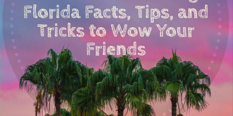 57 Amazing Florida Facts Tips and TricksC